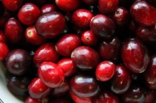 Saturated Cranberries